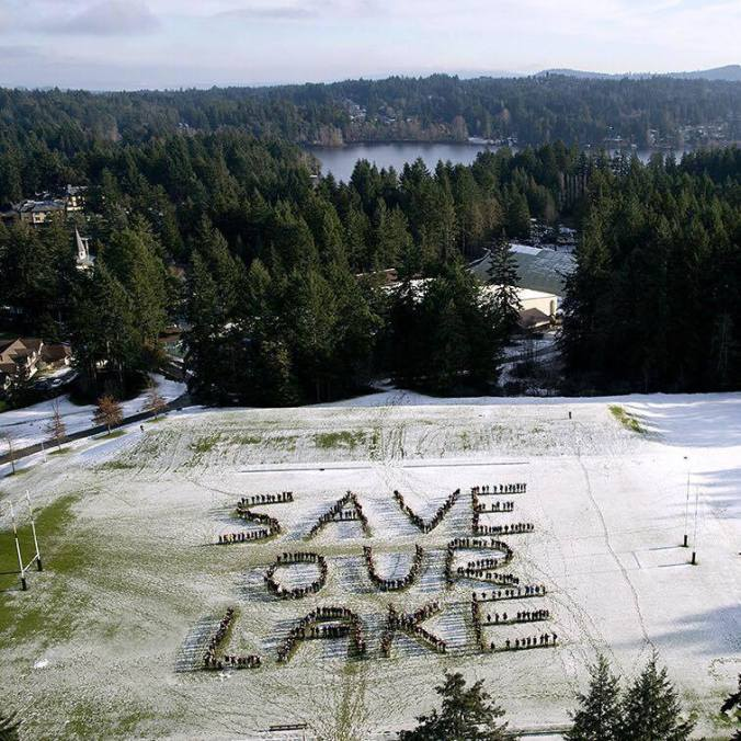 save our lake